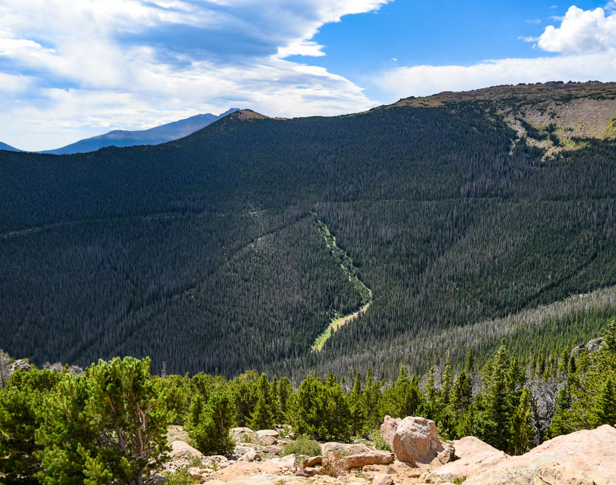 Horseshoe Park overlooks Mummy Mountain, Big Horn Mountain, Dark Mountain, and McGregor Mountain | RMNP | Estes Park, CO. | Photos: ©Pix Meyers 2019